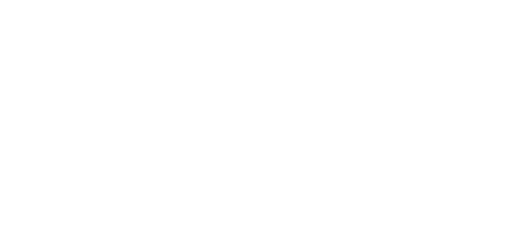 Heart for the Dream Team